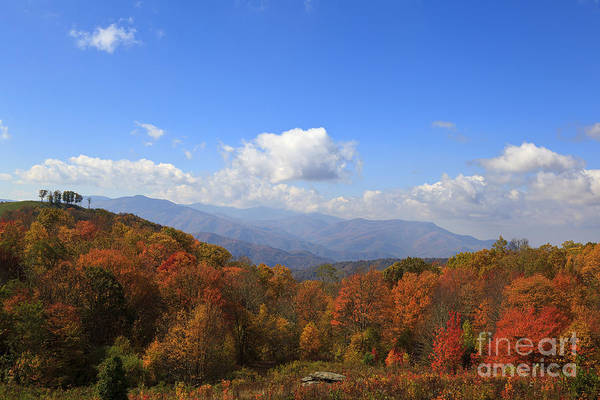 North Carolina Mountains In The Fall Poster