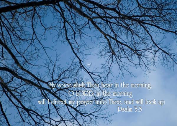 Oak Tree Psalm Poster