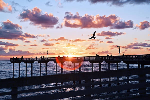 Poster featuring the photograph Ob Pier  by Gigi Ebert