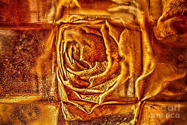 Orange Rose Poster