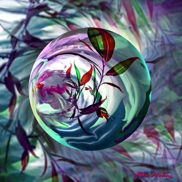 Orbiting Cranberry Dreams Poster
