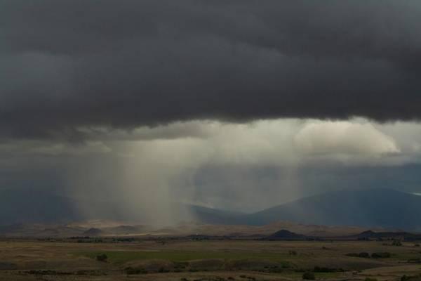 Oregon Rain Poster