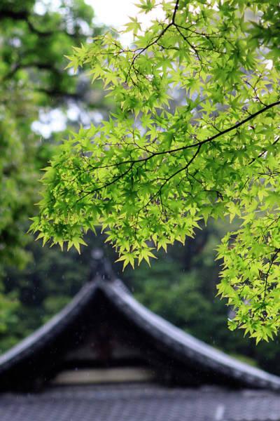 Ornately Designed Roof And Japanese Poster