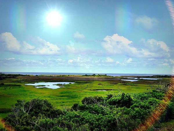 Outer Banks Tranquility Poster