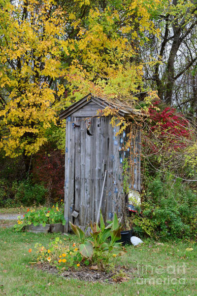Outhouse Surrounded By Autumn Leaves Poster