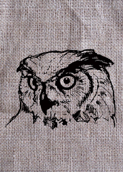 Owl On Burlap Poster