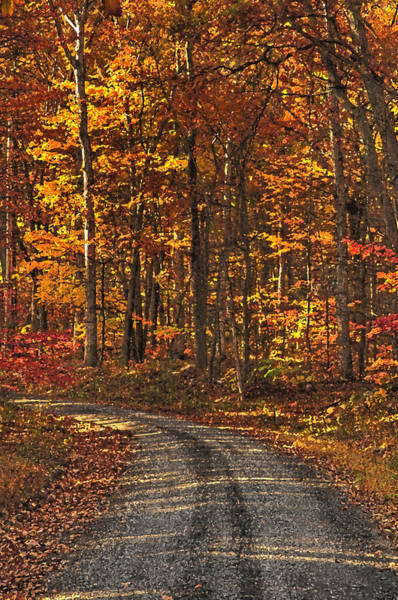 Painted Autumn Country Roads Poster