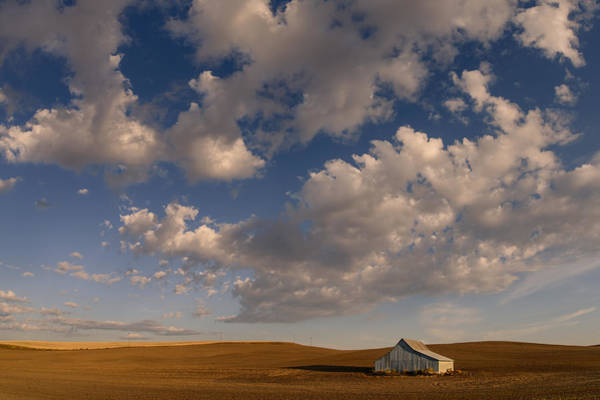 Palouse Serenity Poster