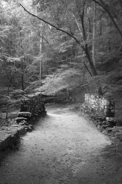 Path In Black And White Poster
