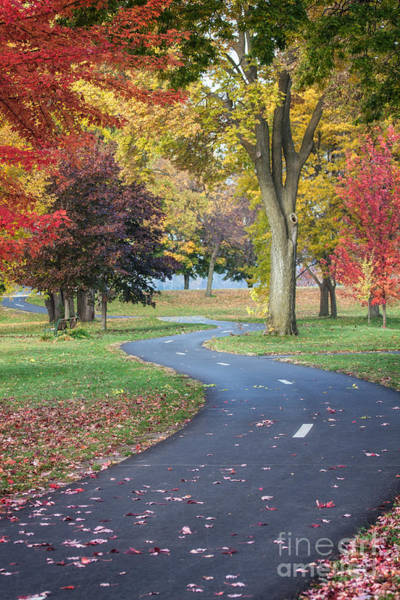 Poster featuring the photograph Peaceful Autumn Path Winona Photo by Kari Yearous