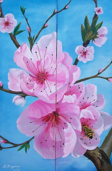 Peach Tree In Bloom Diptych Poster
