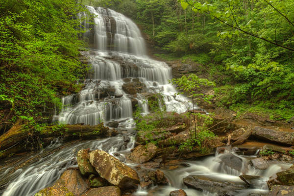 Pearson's Falls - Spring Poster