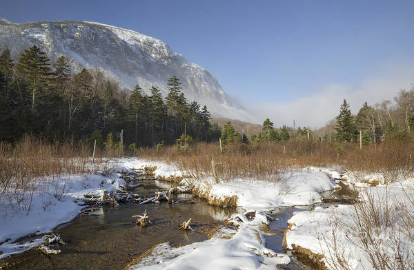 Pemi Trail - Franconia Notch State Park New Hampshire Poster