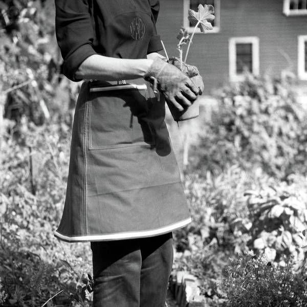 Person Wearing A Gardening Apron Poster
