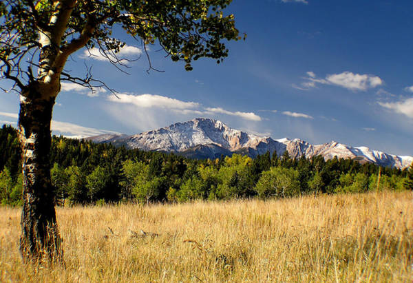 Pikes Peak And Snow Poster