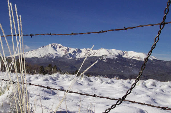 Pikes Peak Through The Fence Poster