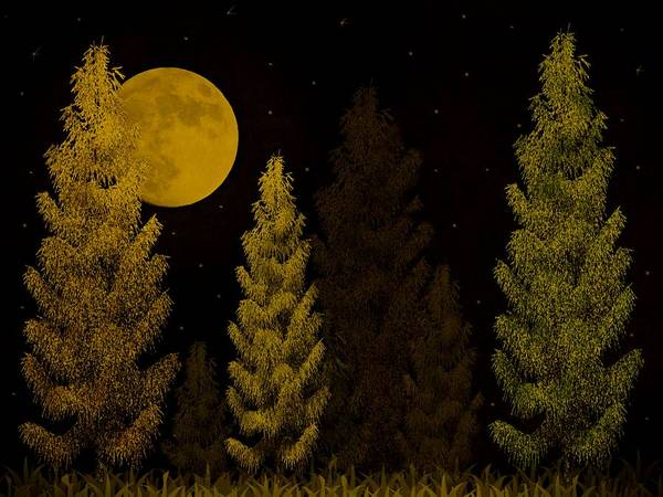 Pine Forest Moon Poster