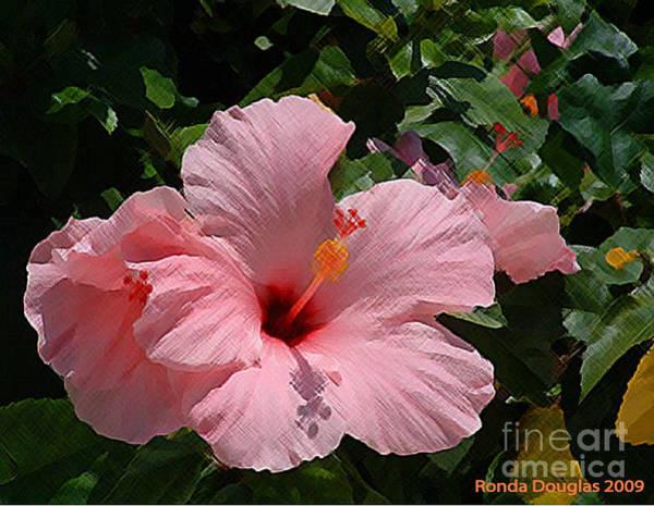 Pink Bloom Poster