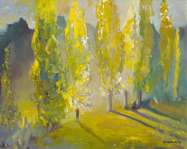 Poplars In The Morning Poster