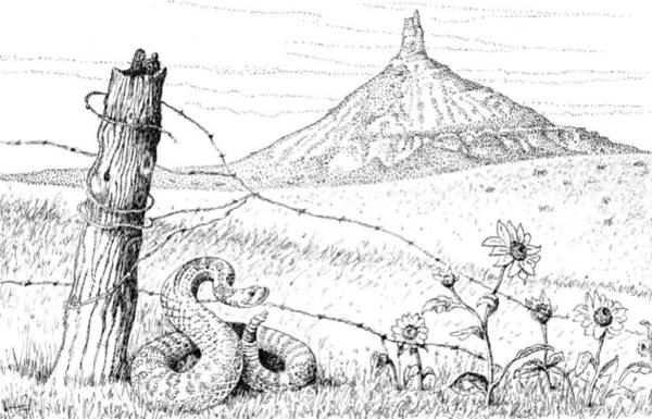 Prairie Rattler Poster
