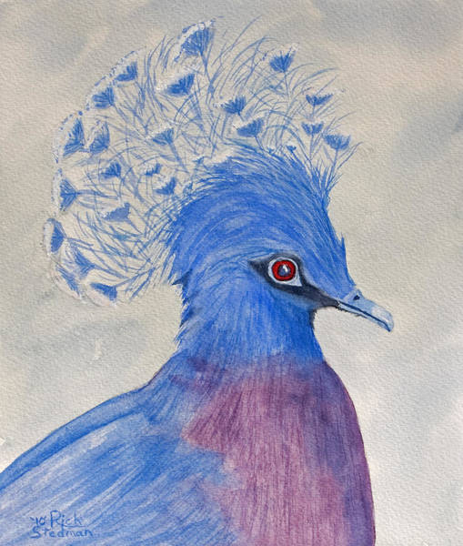Poster featuring the painting Preston Pigeon by Rich Stedman