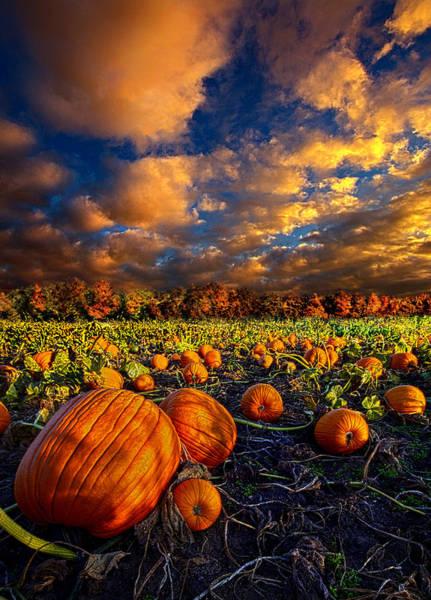 Pumpkin Crossing Poster