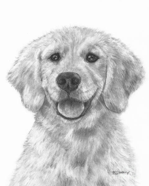 Puppy Golden Retriever Poster
