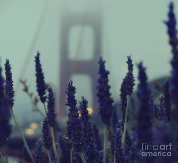 Purple Haze Daze Poster