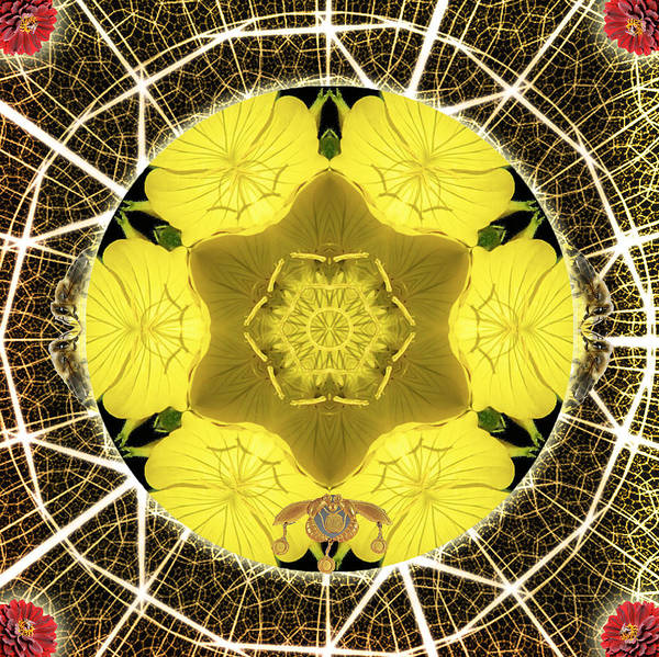 Queen Bee-nectar Of Life Poster