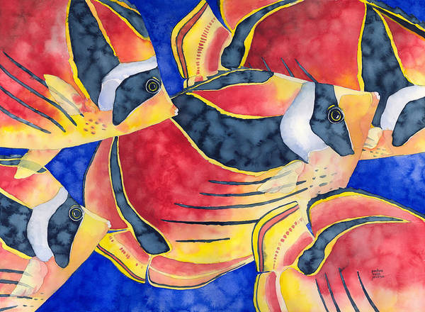 Raccoon Butterflyfish Poster