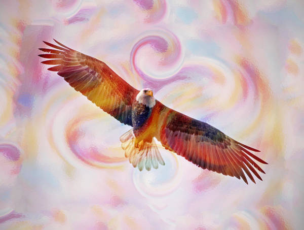 Rainbow Flying Eagle Watercolor Painting Poster