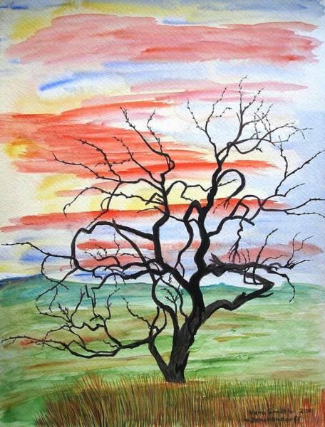 Rainbow Mesquite Poster