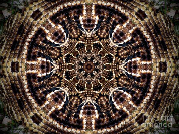 Rattlesnake Circle Poster