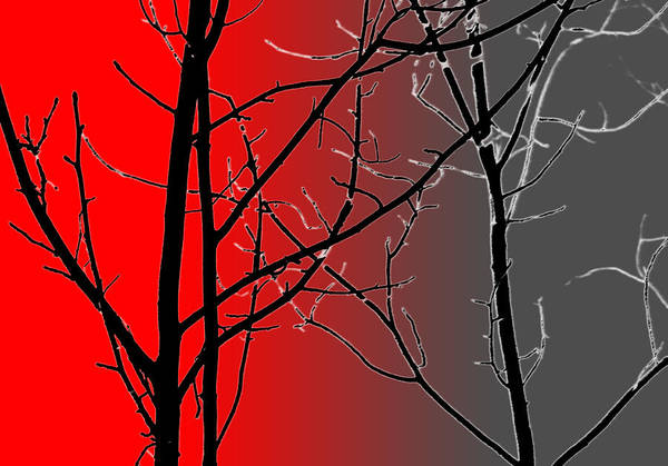 Red And Gray Poster