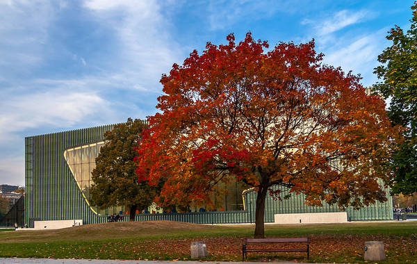 Red And Yellow Tree At The Front Of The Museum Of The History Of Polish Jews In Warsaw Poster