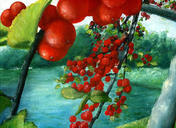 Red Berry Tree On Louisiana Pond Poster