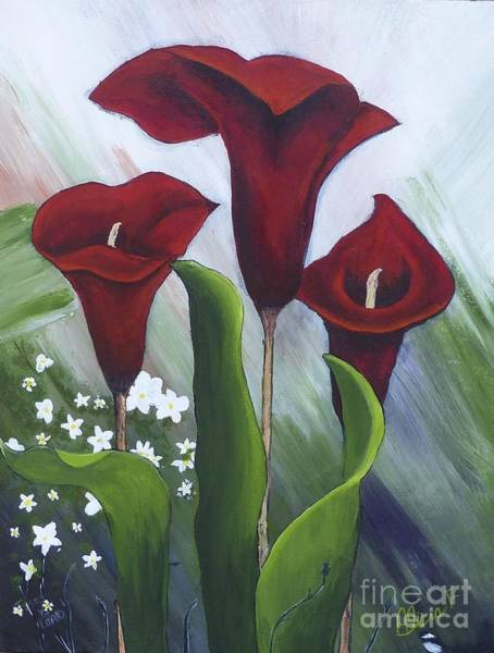 Red Calla Lilies Poster