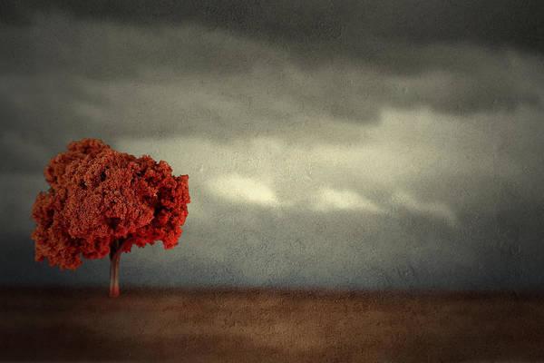 Red Carpet Thunder Poster