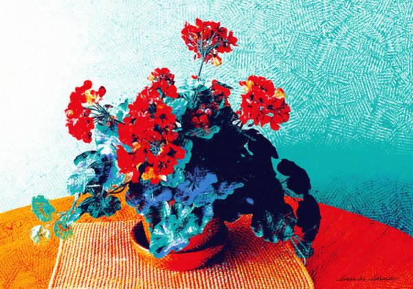 Red Geraniums Still Life Poster