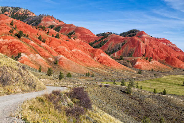 Red Hills Of The Gros Ventre Poster