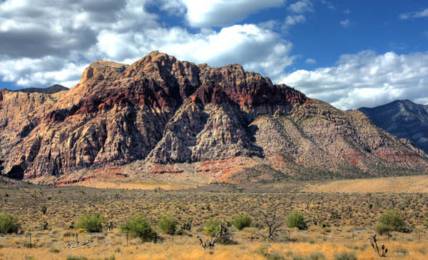 Poster featuring the photograph Red Rock by Andrea Platt