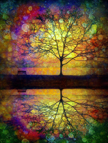 Reflected Dreams Poster