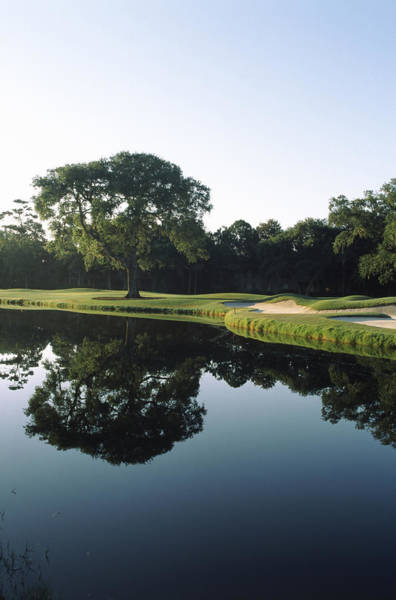Reflection Of Trees In A Lake, Kiawah Poster