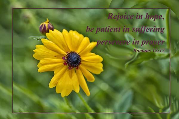 Rejoice In Hope Poster