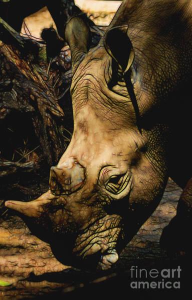 Rhino Hardship Poster