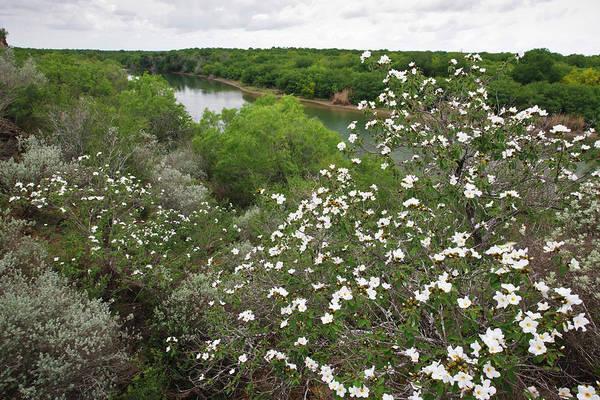 Rio Grande, South Texas Poster