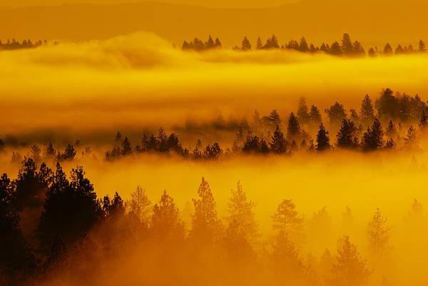 River Fog Rising Poster