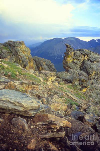 Rockcut In Rocky Mtn National Park Poster
