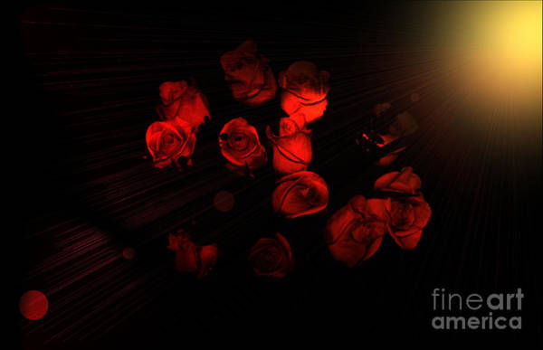 Roses And Black Poster