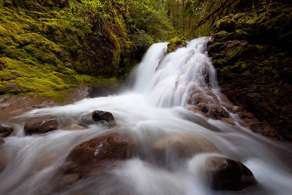 Rushing Cascades Poster